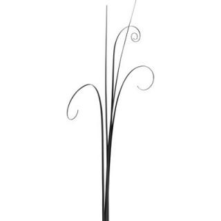 Beargrass noir