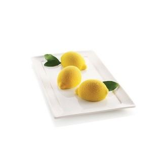 Moule Delizia Al Limone ( Délice au citron )