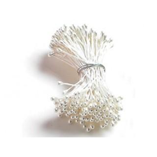 Pistil de fleurs Blanc lustré