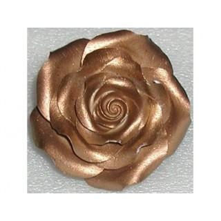 Peinture comestible - Bronze lustré