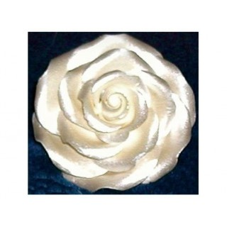 Peinture comestible - Perle lustré 4.5 oz