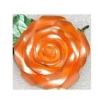 Peinture comestible - Orange lustré 4.5 oz