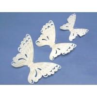 Pochoirs Papillon de dentelle