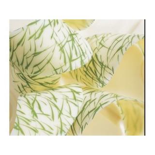 Feuille imprimée Herbes
