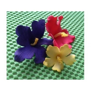 Découpoirs Fleur hawaïenne