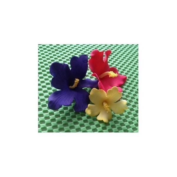 D coupoirs fleur hawa enne - Fleure hawaienne ...