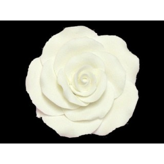 Rose blanche en pastillage - Grande