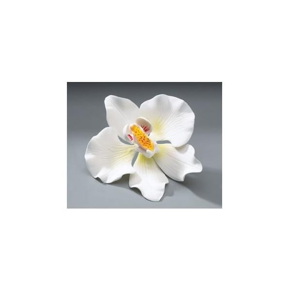 Bien connu Orchidée blanche en pastillage ZY48