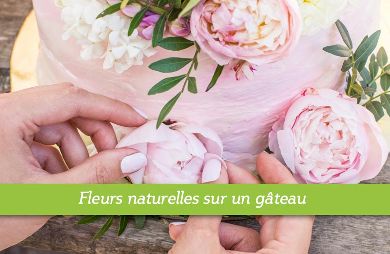 Comment mettre des fleurs naturelles sur un gâteau