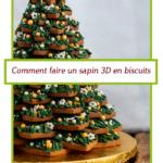 Comment faire un sapin en 3D avec des biscuits pains d'épices.