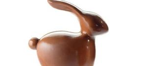 Moule Petit Rabbit 3D